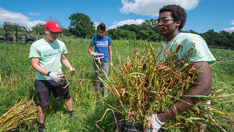 A Badger Volunteer team at the Linda & Gene Farley Center for Peace, Justice and Sustainability, a nonprofit organization dedicated to promoting ecological sustainability, social justice and peace.